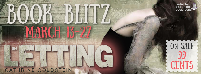 the letting blitz banner new