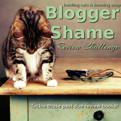 2017 Blogger Shame Review Challenge